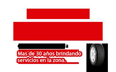 Logo GOMERÍA TEGLIA